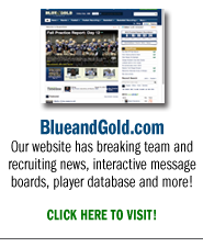 Blue and Gold Website
